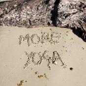 Yogaaaaa: Die Herbst-/Winter-Kurse starten!